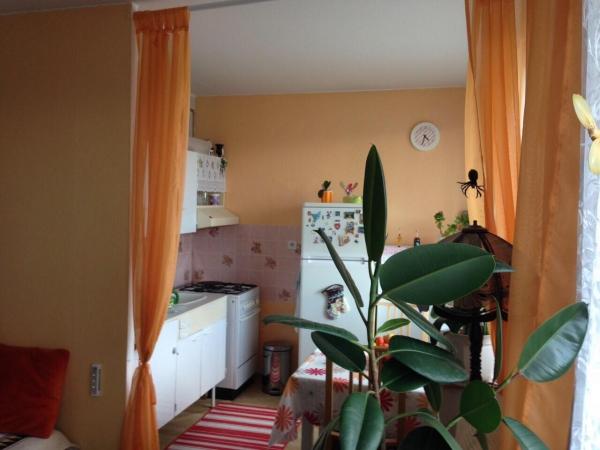 Prodej bytu 1+1 Slaný, Záfortenská ul.